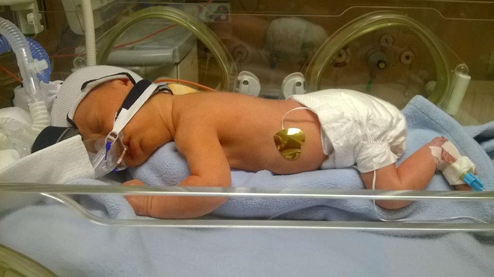 Lilkowe narodziny.