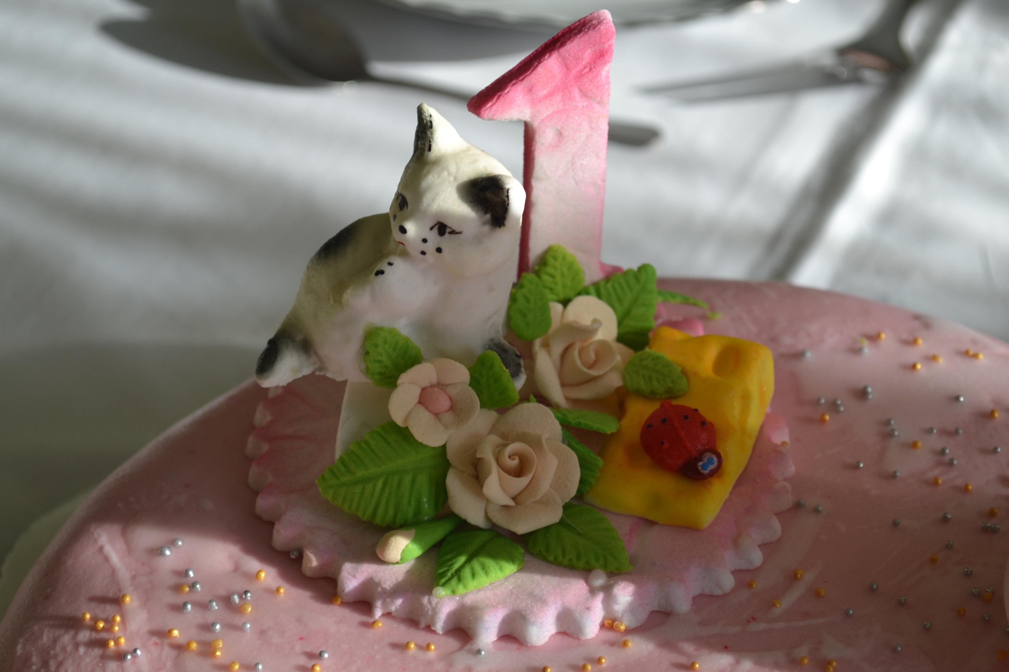 Pierwsze urodziny Lilki